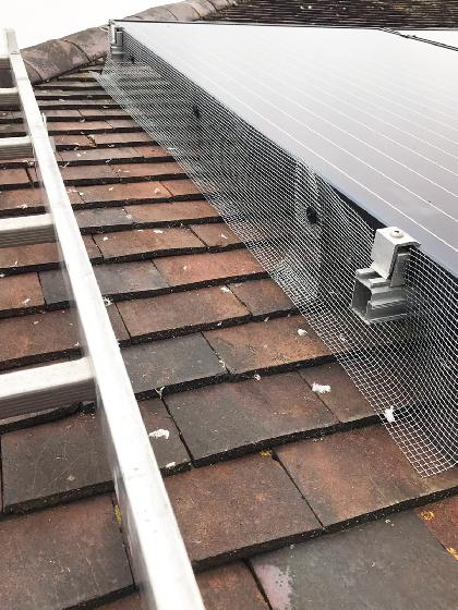 SWAT Pest Control Boston - Bird Proofing Solar Panels After Close Up
